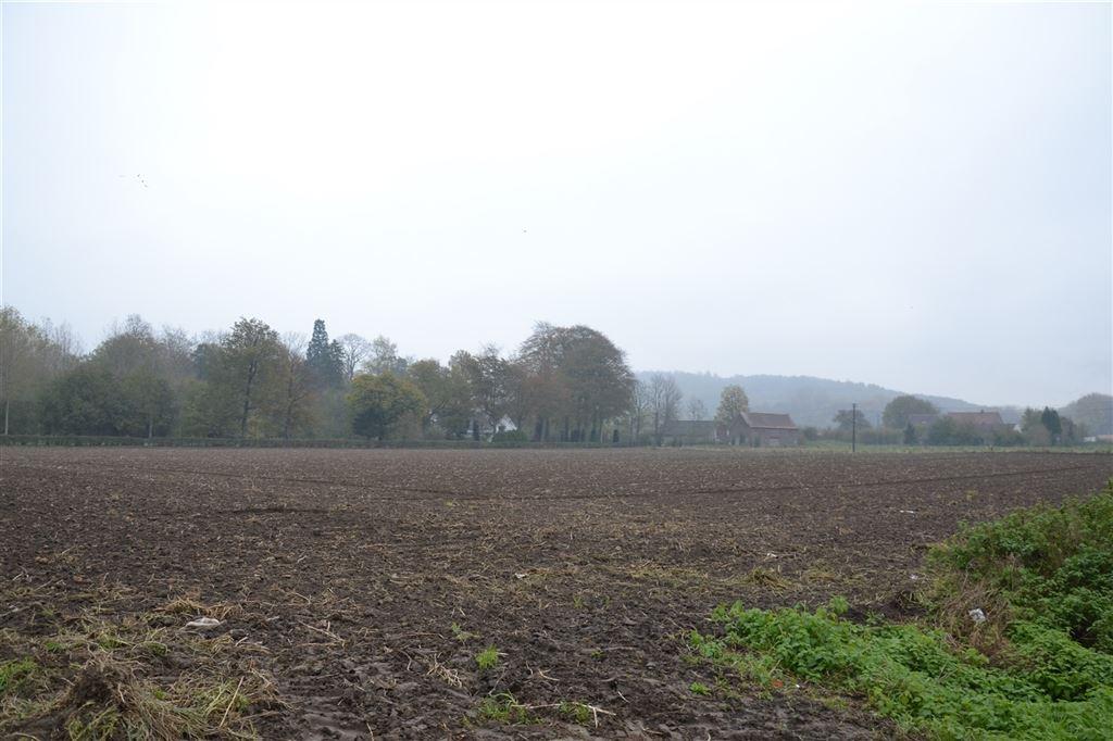 Terrain à bâtir de 50 ares avec diverses découpes possibles, en pleine campagne au calme. 069.67.27.70