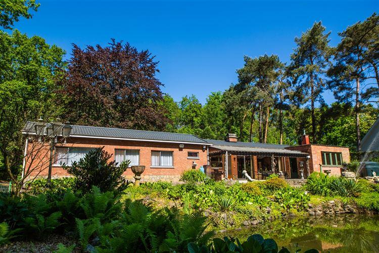 Villa/Woning/Hoeve kopen in Putte
