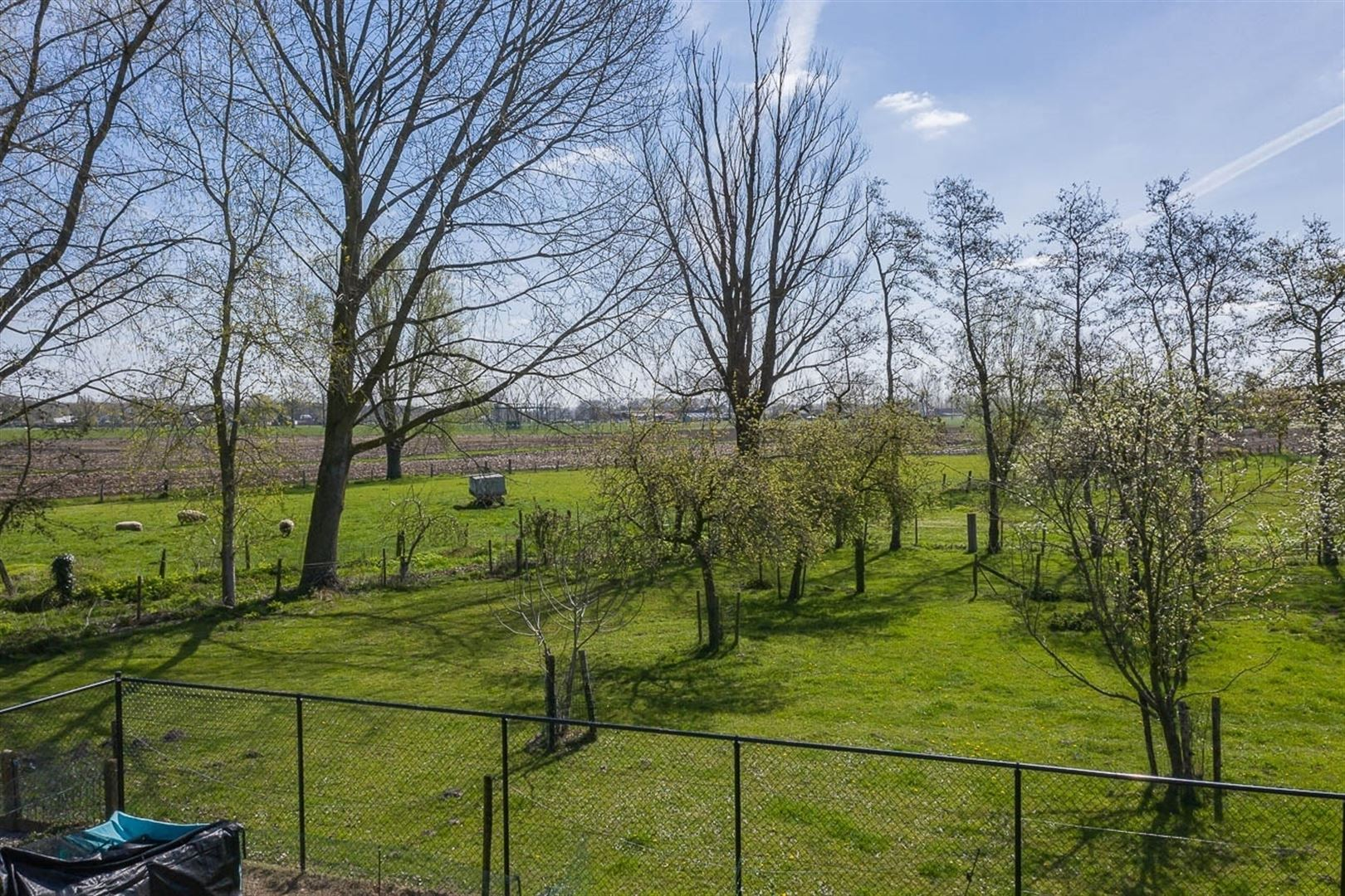 Foto 24 : Villa te 9100 SINT-NIKLAAS (België) - Prijs € 549.000