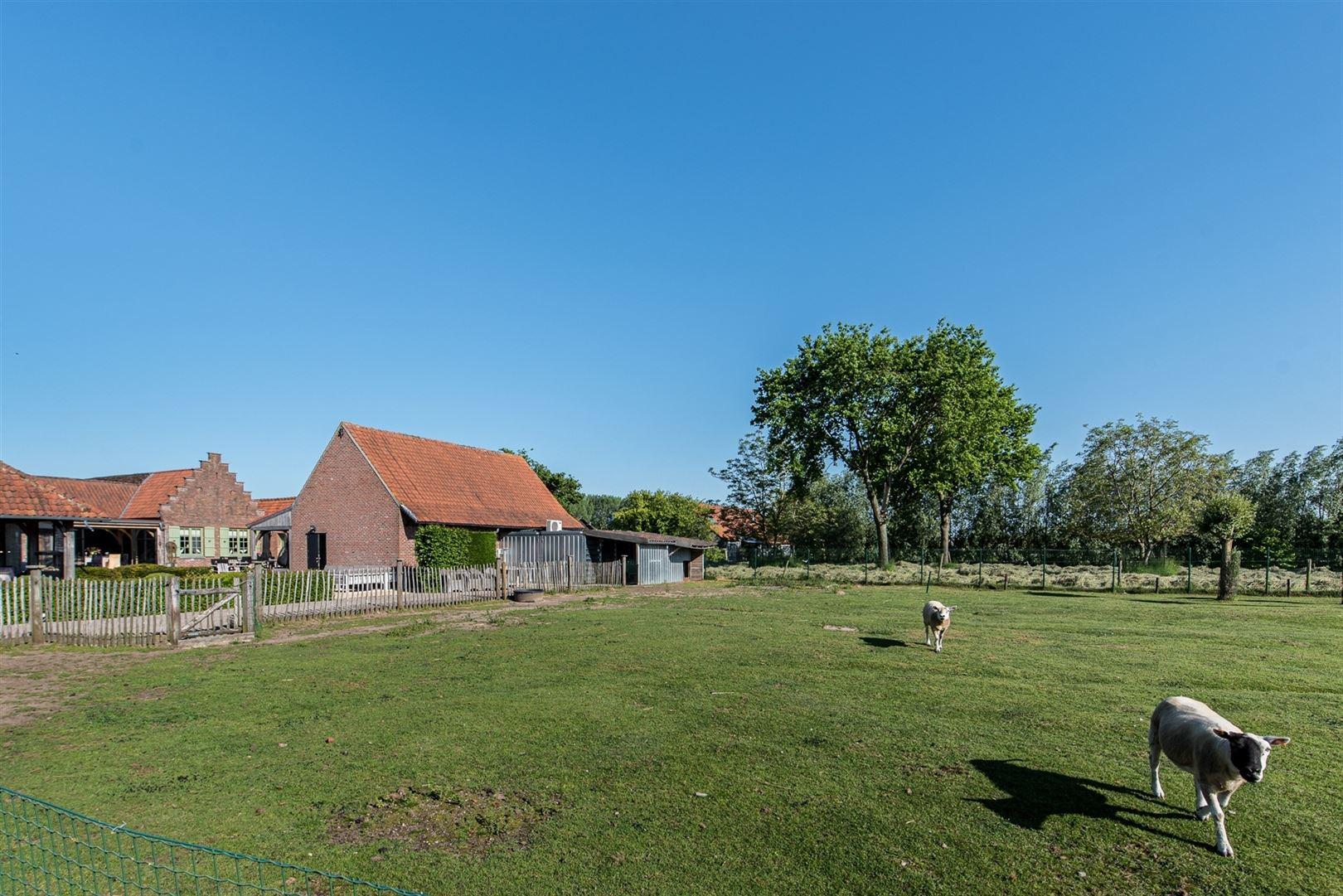Foto 37 : Gemengd gebouw te 9160 LOKEREN (België) - Prijs € 1.400.000