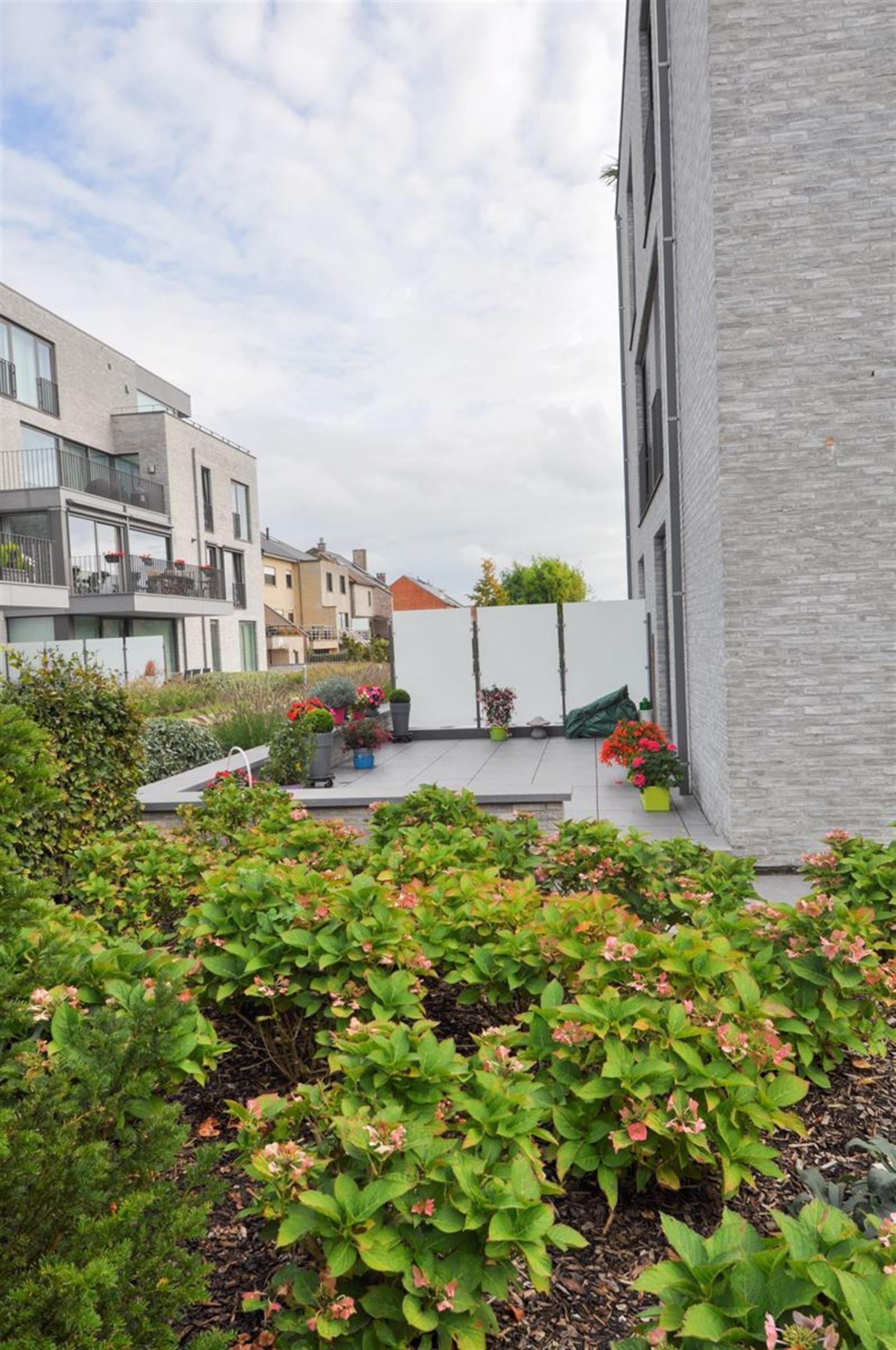 FOTO'S 16 : Appartement te 1500 HALLE (België) - Prijs € 1.200