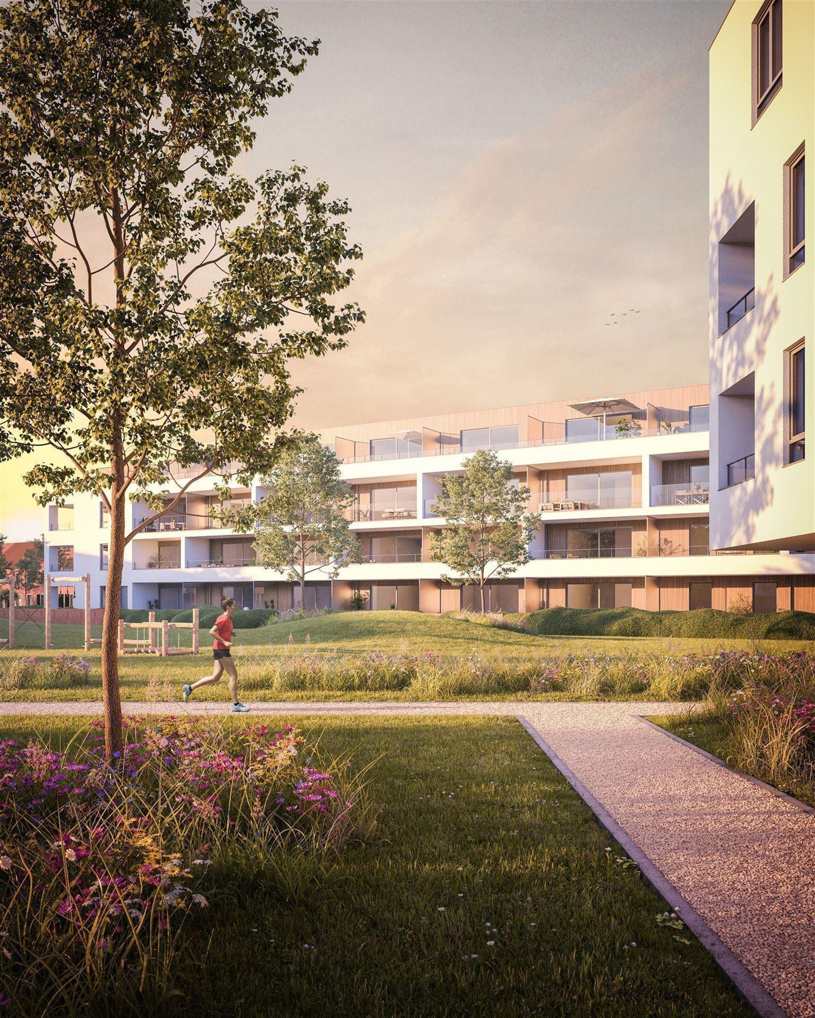 FOTO'S 3 : Appartement te 7800 ATH (België) - Prijs € 218.500