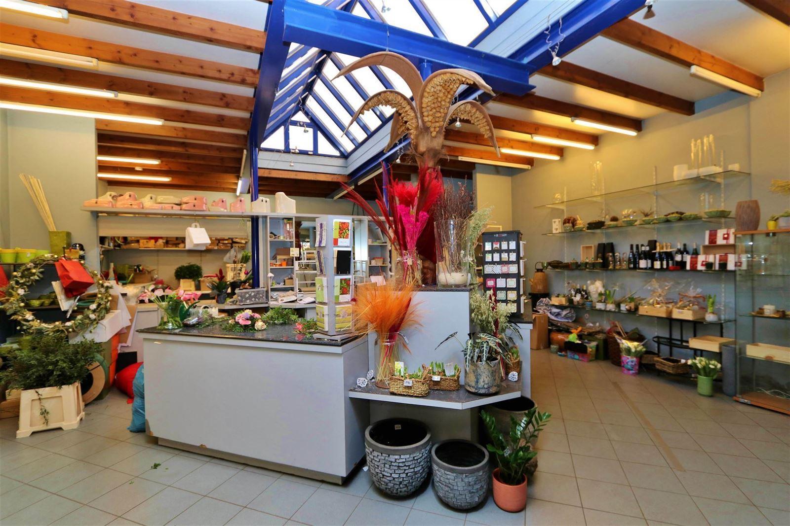 FOTO'S 5 : Handelspand te 1500 HALLE (België) - Prijs € 1.500