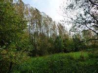 Foto 1 : Bos te 9300 AALST (België) - Prijs € 90.000