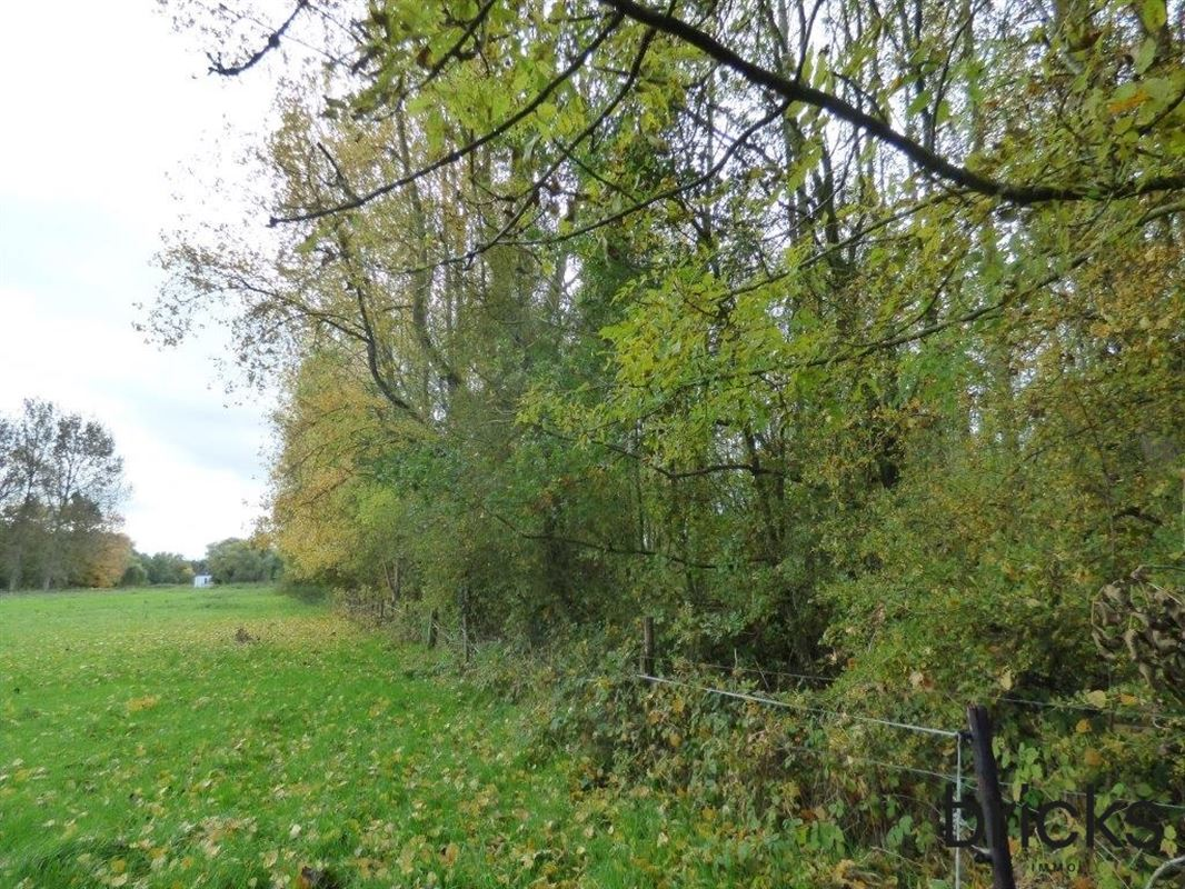 Foto 3 : Bos te 9300 AALST (België) - Prijs € 90.000