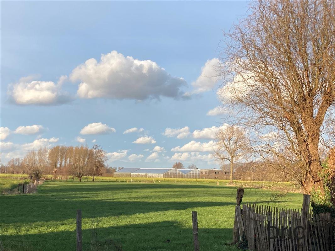 Foto 10 : Driegevelwoning te 7760 WETTEREN (België) - Prijs € 275.000