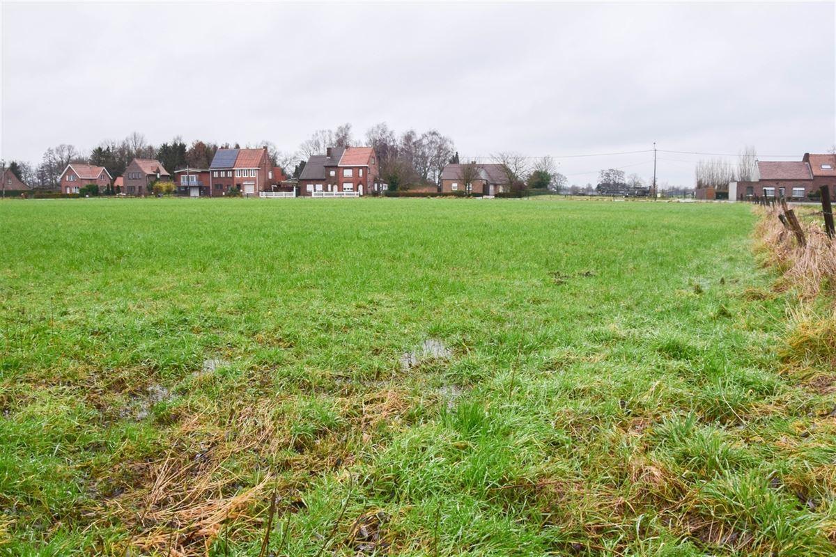 Foto 7 : Bouwgrond voor landbouwactiviteit - Landbouwgrond te 9250 WAASMUNSTER (België) - Prijs 20 €/m²
