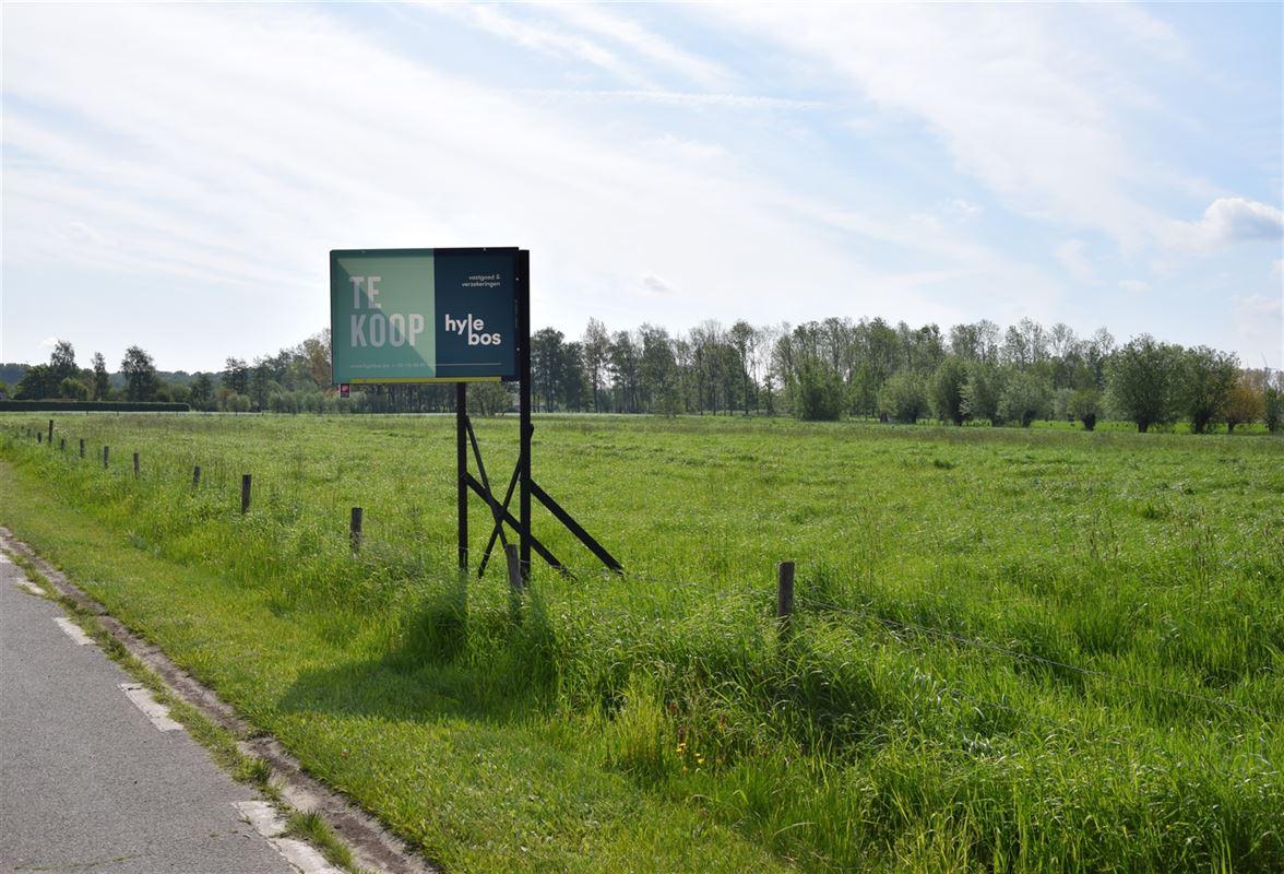 Foto 1 : Bouwgrond voor landbouwactiviteit - Landbouwgrond te 9250 WAASMUNSTER (België) - Prijs 20 €/m²