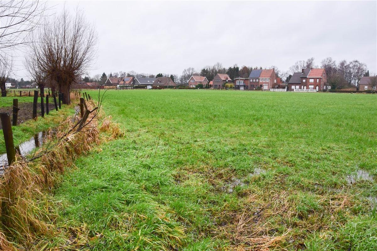 Foto 6 : Bouwgrond voor landbouwactiviteit - Landbouwgrond te 9250 WAASMUNSTER (België) - Prijs 15 €/m²