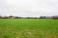 Foto 4 : Bouwgrond voor landbouwactiviteit - Landbouwgrond te 9250 WAASMUNSTER (België) - Prijs 20 €/m²