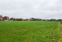 Foto 5 : Bouwgrond voor landbouwactiviteit - Landbouwgrond te 9250 WAASMUNSTER (België) - Prijs 20 €/m²
