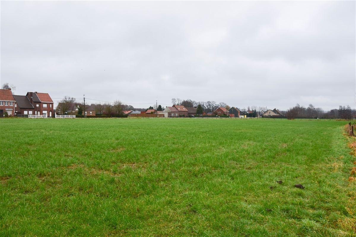 Foto 5 : Bouwgrond voor landbouwactiviteit - Landbouwgrond te 9250 WAASMUNSTER (België) - Prijs 15 €/m²