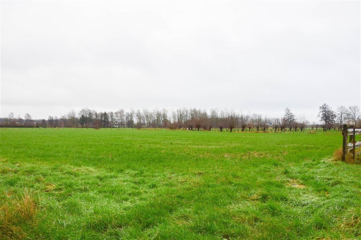 Foto 3 : Bouwgrond voor landbouwactiviteit - Landbouwgrond te 9250 WAASMUNSTER (België) - Prijs 20 €/m²