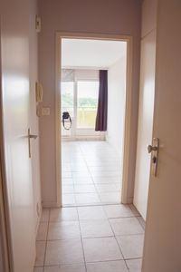 Foto 2 : Studio(s) te 9100 SINT-NIKLAAS (België) - Prijs 465 €/maand