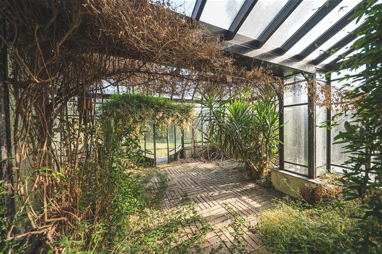 Image 26 : Maison de maître à 4360 BERGILERS (Belgique) - Prix 360.000 €