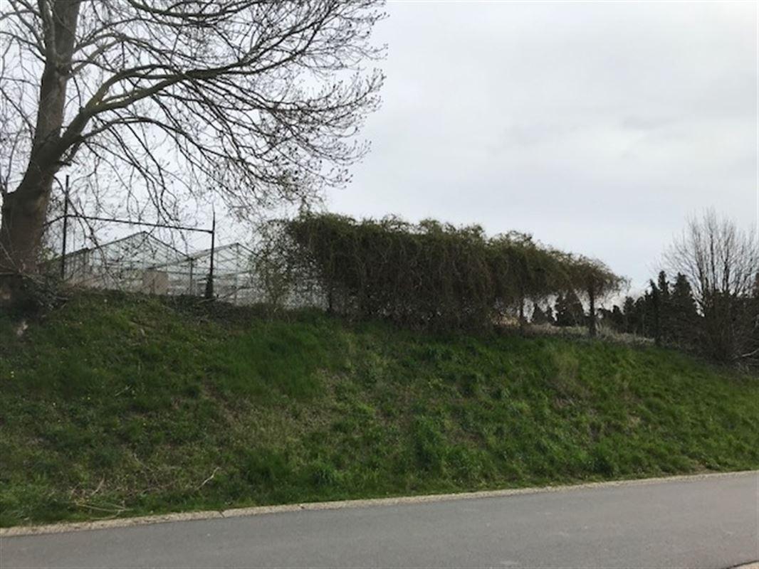 Foto 2 : Projectgrond te 3890 GINGELOM (België) - Prijs € 198.000