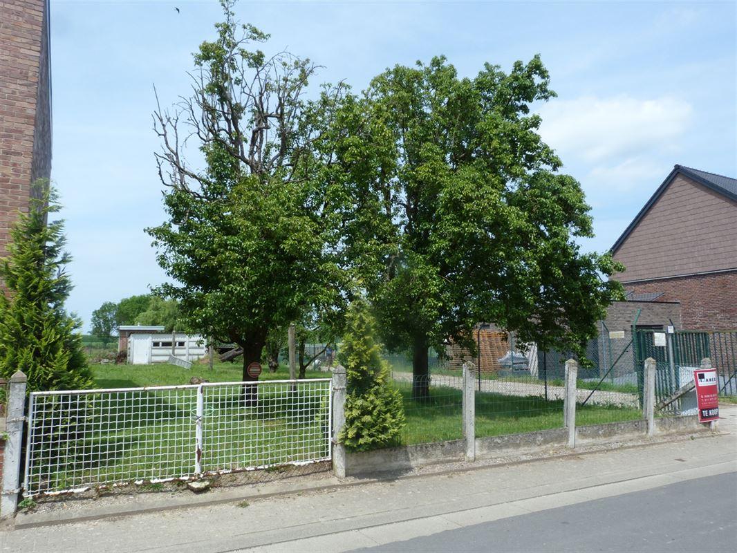 Foto 2 : Bouwgrond te 3806 VELM (België) - Prijs € 79.000