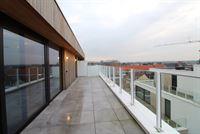 Foto 10 : Assistentie-appartement te 9230 TEN EDE (België) - Prijs € 840