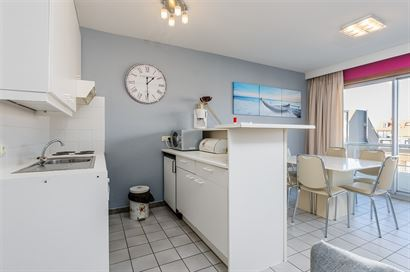 TE HUUR OP JAARBASIS - mooi gemeubeld appartement met 1 slaapkamer - living met divanbed 1x2 - ingerichte open keuken met elektrisch fornuis, frigo, v...