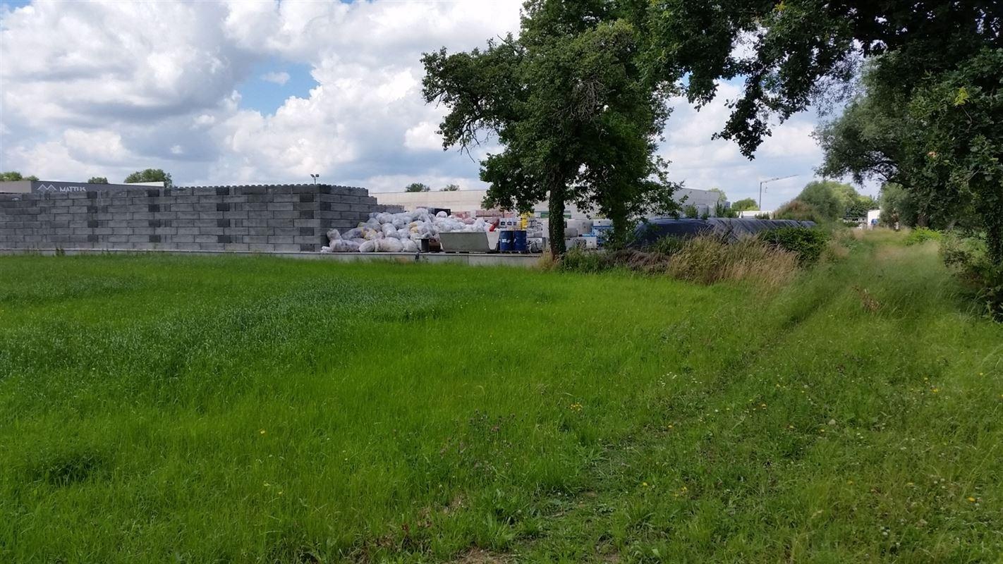 Foto 5 : Industriegrond te 2220 HEIST-OP-DEN-BERG (België) - Prijs € 599.000