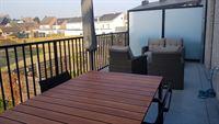 Foto 3 : Appartement te 2220 Hallaar (België) - Prijs € 800