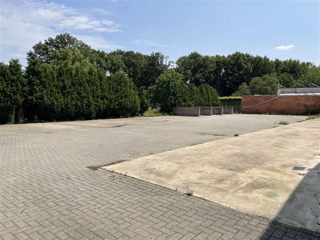 Foto 4 : Magazijn met woonst te 2222 ITEGEM (België) - Prijs € 760.000