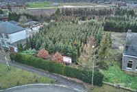 Foto 1 : Bouwgrond te 3930 ACHEL (België) - Prijs € 119.500