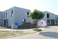 Foto 3 : Nieuwbouw Project Deken Dolsstraat - Pastoor Lemmensstraat te HAMONT (3930) - Prijs Van € 310.000 tot € 320.000