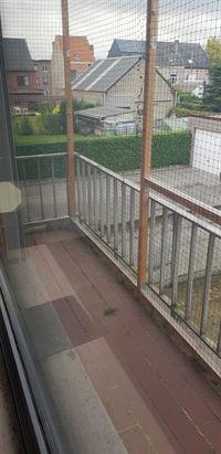 Foto 11 : Appartement te 2150 BORSBEEK (België) - Prijs € 180.000