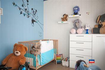 Foto 4 : Gelijkvloers appartement te 2660 HOBOKEN (België) - Prijs € 249.950