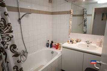Foto 6 : Appartementsgebouw te 2660 HOBOKEN (België) - Prijs € 1.499.950