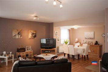 Foto 3 : Appartementsgebouw te 2660 HOBOKEN (België) - Prijs € 1.499.950