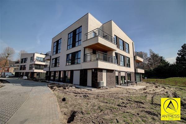 Penthouse te 2530 Boechout (België) - Prijs € 925