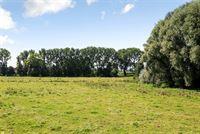 Foto 22 : Villa te 8531 BAVIKHOVE (België) - Prijs € 425.000