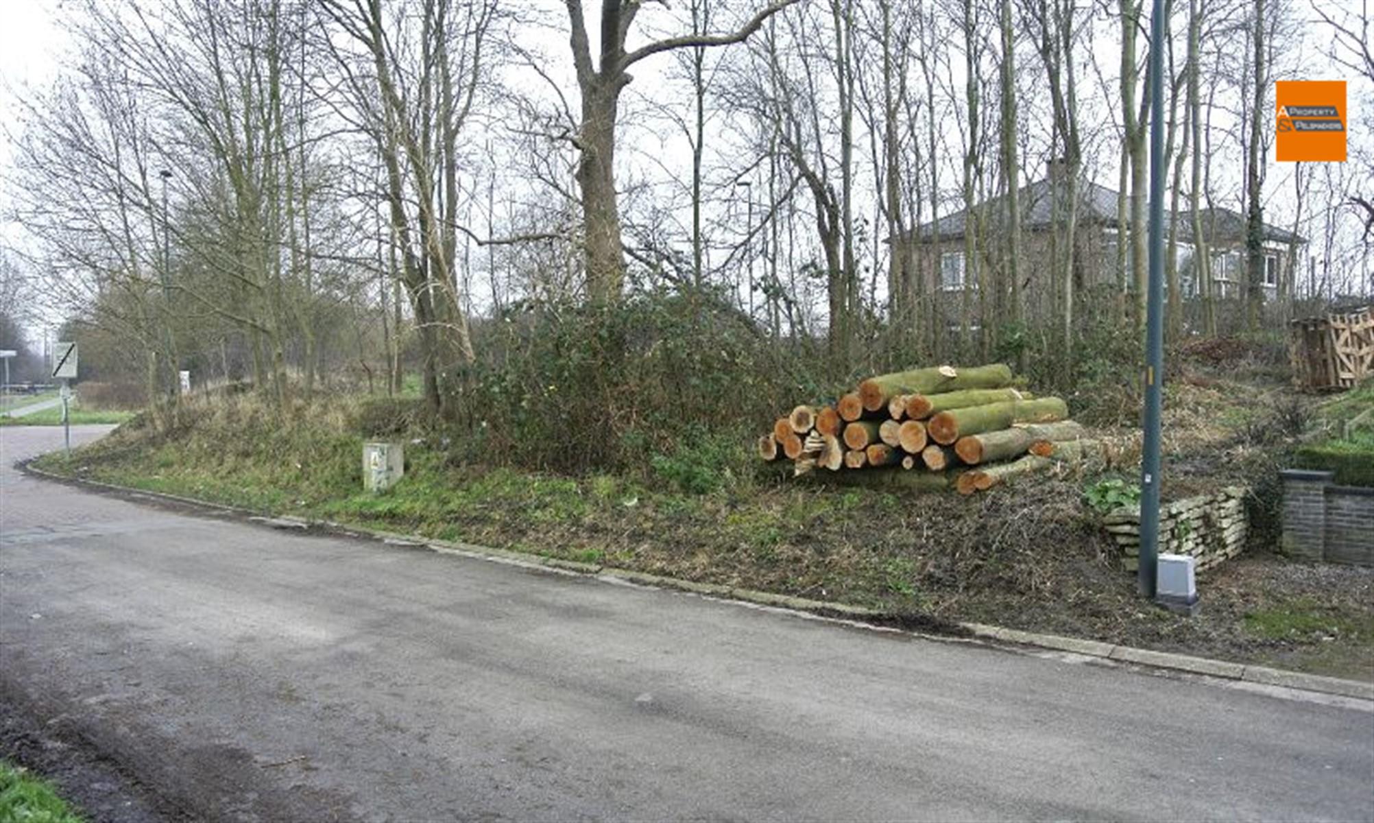 Image 4 : Terrain à bâtir à 1932 Sint-Stevens-Woluwe (Belgique) - Prix 315.000 €