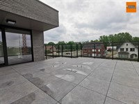 Image 13 : Penthouse IN 2230 HERSELT (Belgium) - Price 1.050 €