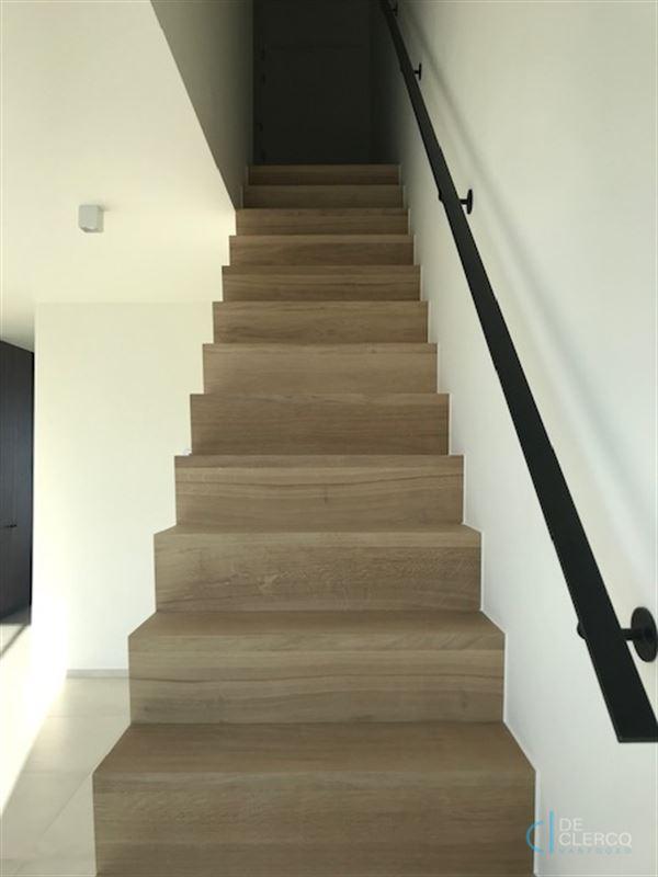 Foto 12 : Duplex/Penthouse te 9080 LOCHRISTI (België) - Prijs € 950