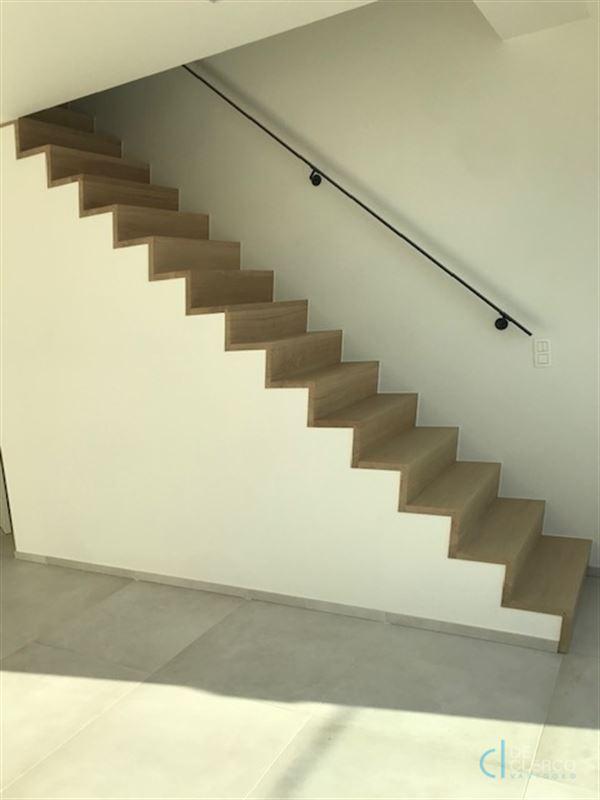 Foto 2 : Duplex/Penthouse te 9080 LOCHRISTI (België) - Prijs € 950