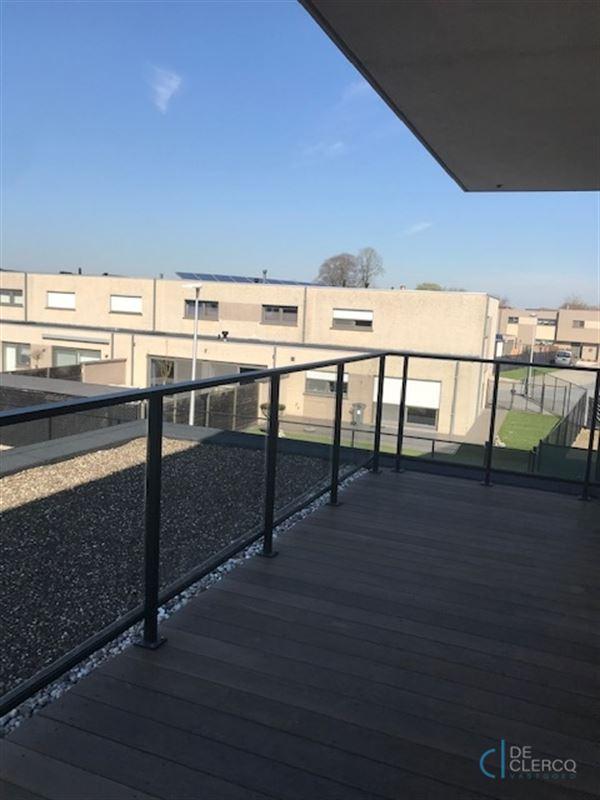 Foto 13 : Appartement te 9080 LOCHRISTI (België) - Prijs € 950