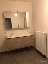 Foto 14 : Appartement te 9080 LOCHRISTI (België) - Prijs € 900
