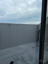 Foto 9 : Penthouse te 9080 LOCHRISTI (België) - Prijs € 820