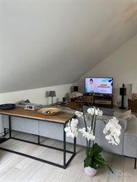 Foto 2 : Penthouse te 9080 LOCHRISTI (België) - Prijs € 820