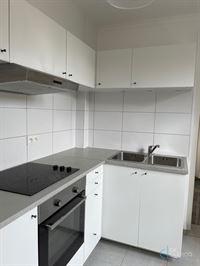 Foto 13 : Huis te 9080 LOCHRISTI (België) - Prijs € 850