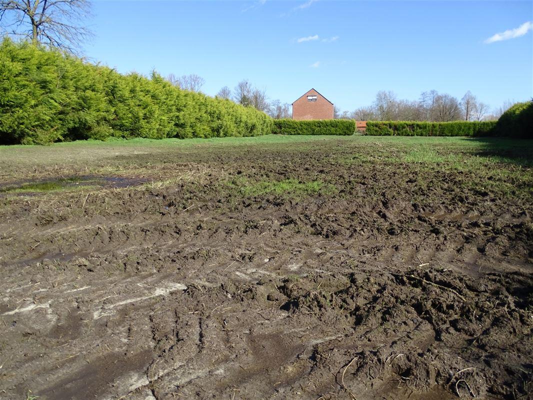 Foto 3 : Landbouwgrond te 2830 HEINDONK (België) - Prijs In optie