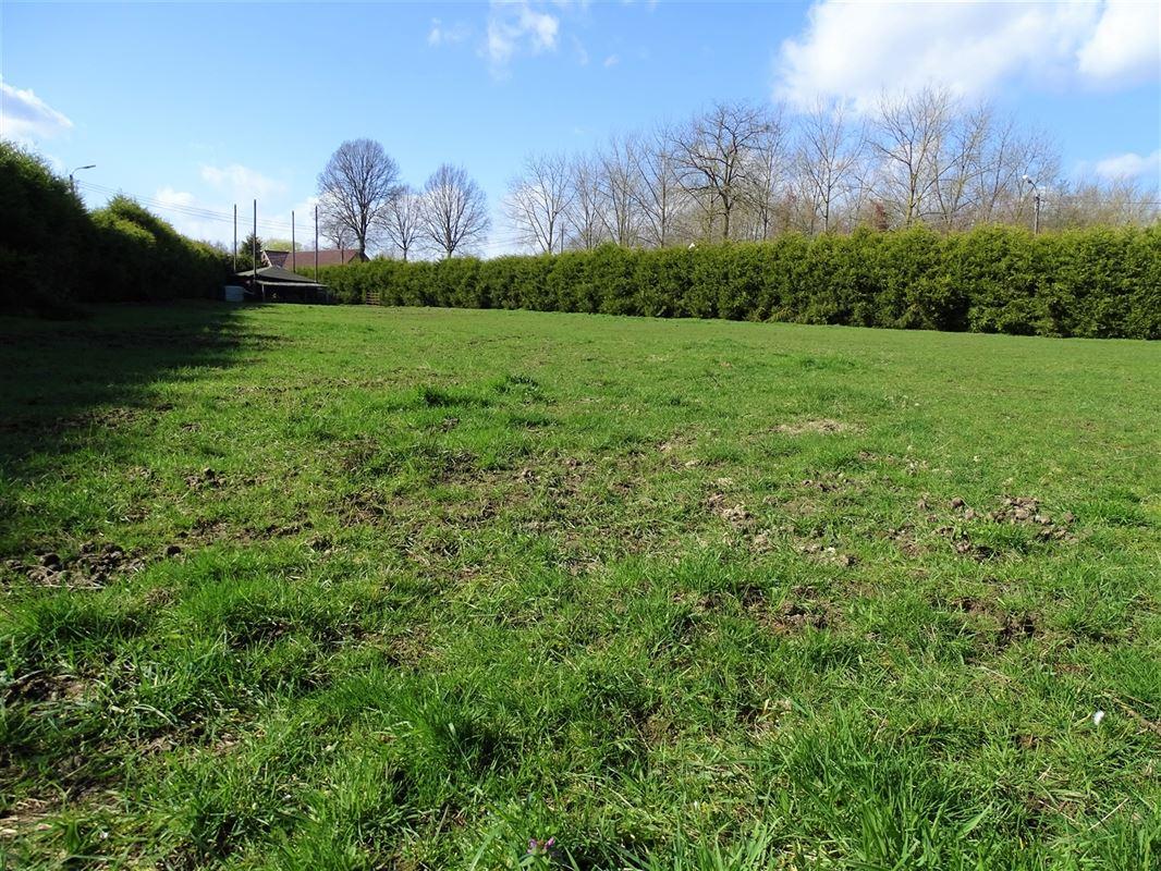 Foto 2 : Landbouwgrond te 2830 HEINDONK (België) - Prijs In optie