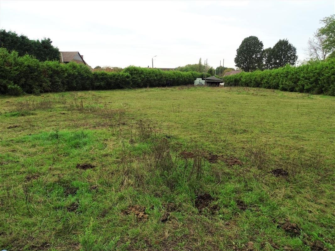 Foto 10 : Landbouwgrond te 2830 HEINDONK (België) - Prijs In optie