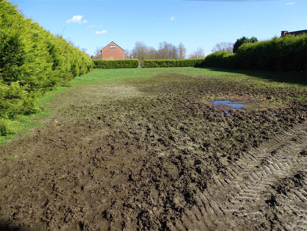 Foto 4 : Landbouwgrond te 2830 HEINDONK (België) - Prijs In optie