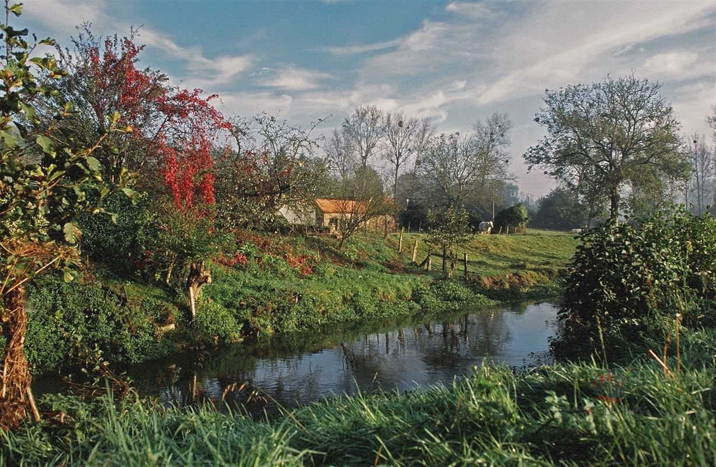 Foto 2 : vakantiehuis te 62134 TILLY-CAPELLE (Frankrijk) - Prijs € 180.000