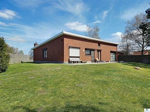Foto 2 : bungalow te 2223 SCHRIEK (België) - Prijs € 345.000