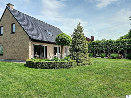 Foto 2 : villa te 2520 OELEGEM (België) - Prijs € 595.000
